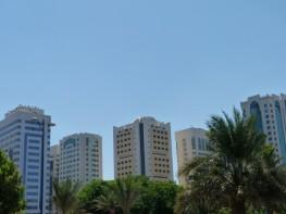 Abu Dhabi_2013 (1) (Medium)