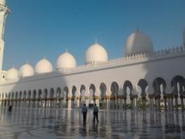 Abu Dhabi_2013 (106) (Medium)