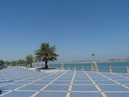 Abu Dhabi_2013 (114) (Medium)