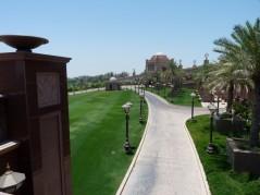 Abu Dhabi_2013 (22) (Medium)