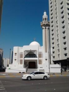 Abu Dhabi_2013 (34) (Medium)