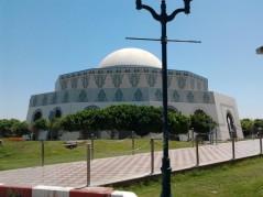 Abu Dhabi_2013 (49) (Medium)