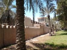 Abu Dhabi_2013 (50) (Medium)