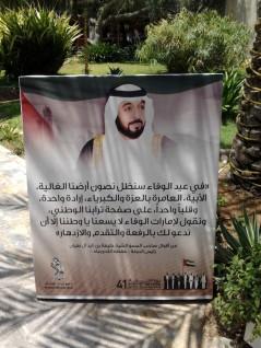 Abu Dhabi_2013 (53) (Medium)