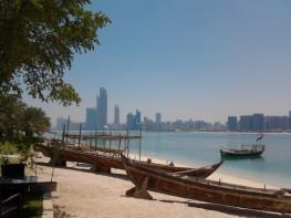 Abu Dhabi_2013 (57) (Medium)