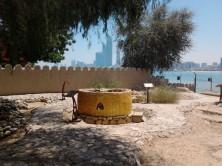 Abu Dhabi_2013 (62) (Medium)