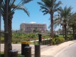 Abu Dhabi_2013 (67) (Medium)