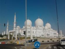 Abu Dhabi_2013 (68) (Medium)