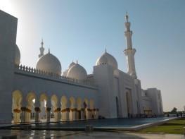 Abu Dhabi_2013 (71) (Medium)