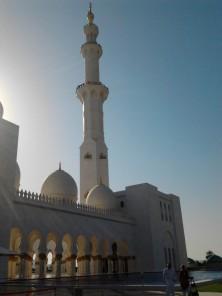 Abu Dhabi_2013 (74) (Medium)