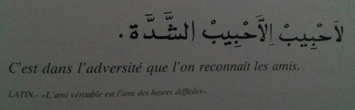 Proverbes marocains (1)