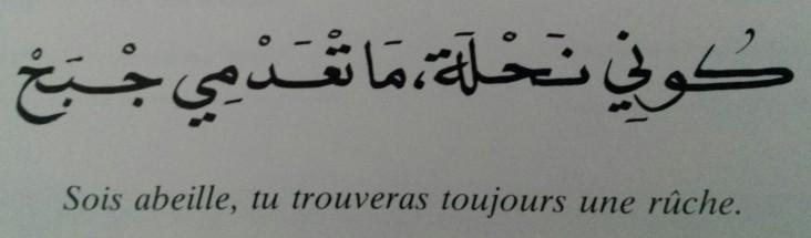 Proverbes marocains (12)