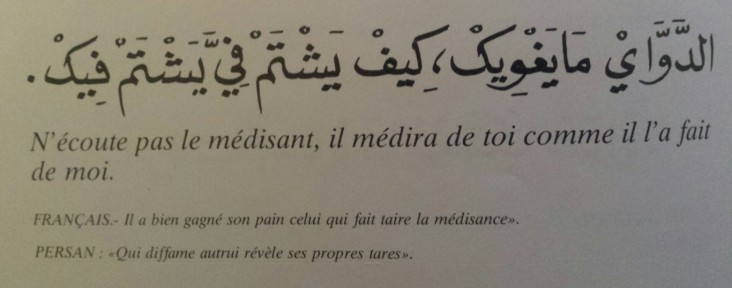 Proverbes marocains (16)