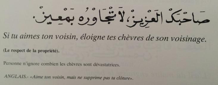 Proverbes marocains (2)