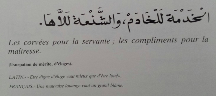 Proverbes marocains (20)