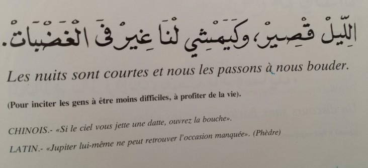 Proverbes marocains (25)