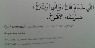 Proverbes marocains (6)