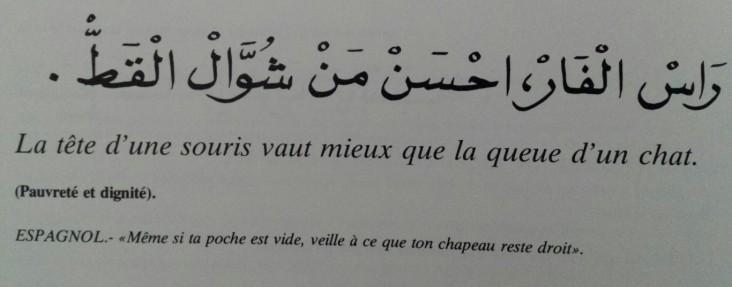 Proverbes marocains (9)